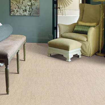 Caress Carpet by Shaw in Buford, GA