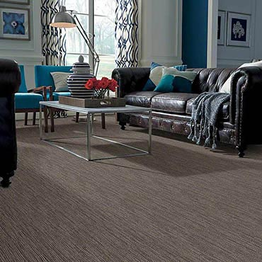 Anso® Nylon Carpet | Buford, GA